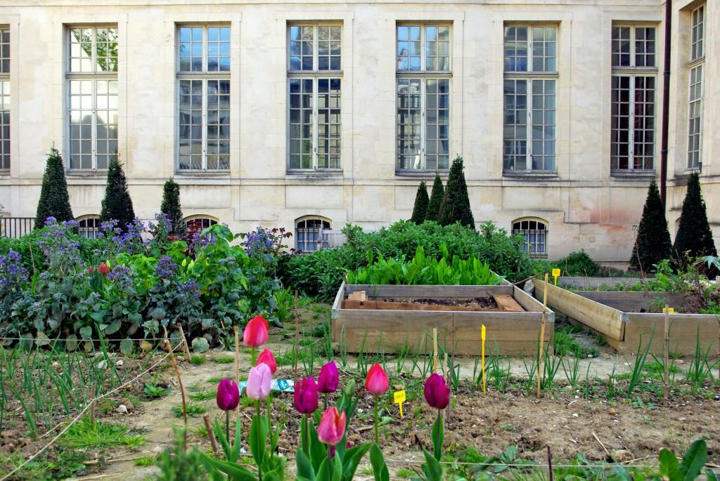 Jardin des Rosiers, Paris © French Moments