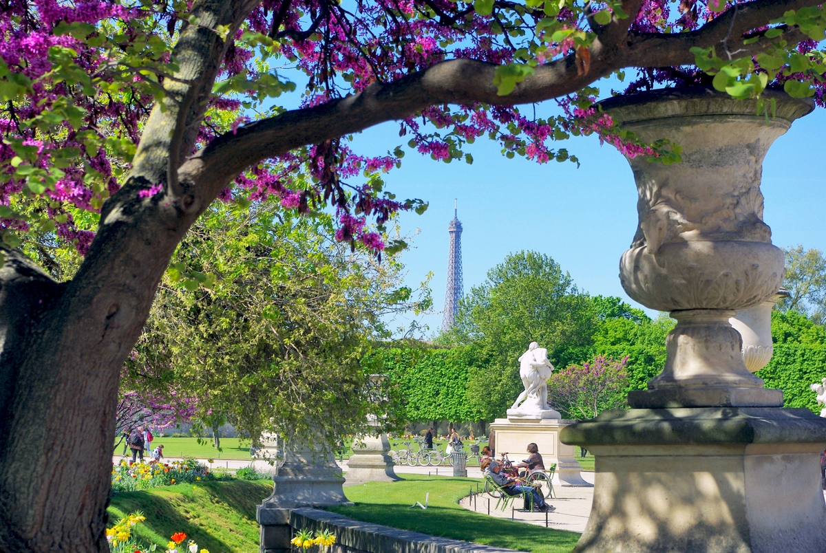 Tuileries in the spring © French Moments
