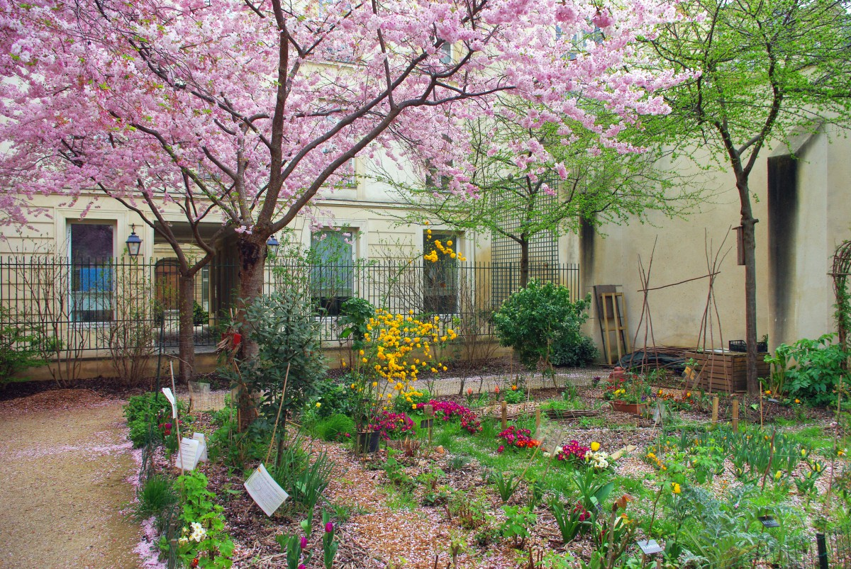 Parks and Gardens of Paris: Anne Frank Garden © French Moments