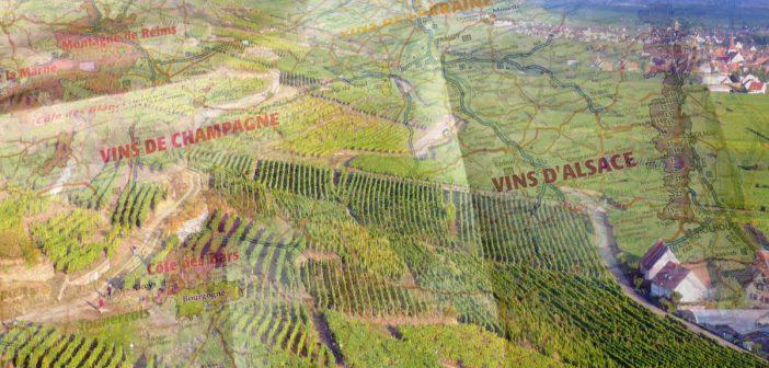 France IGN Wine Map
