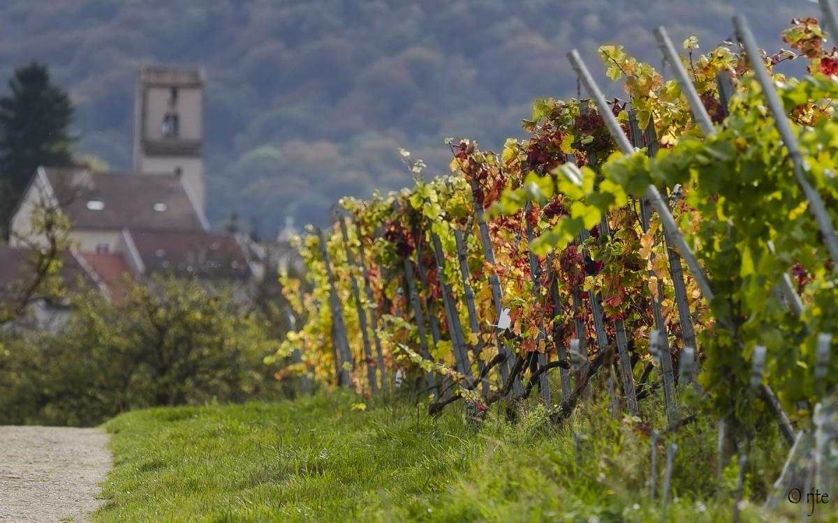 Côtes de Toul