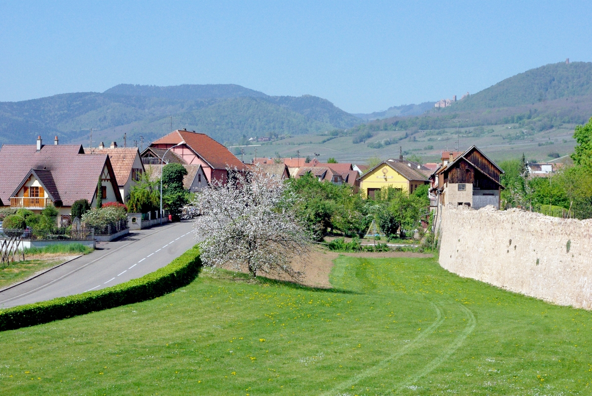 Bergheim on the Alsace Wine Route © French Moments