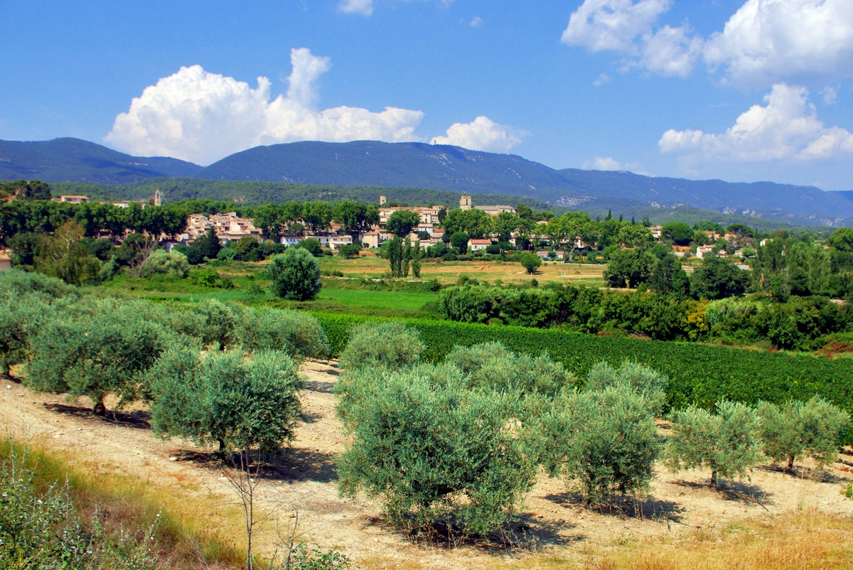 Photos of Rural France: The countryside of Cucuron, Provence © French Moments