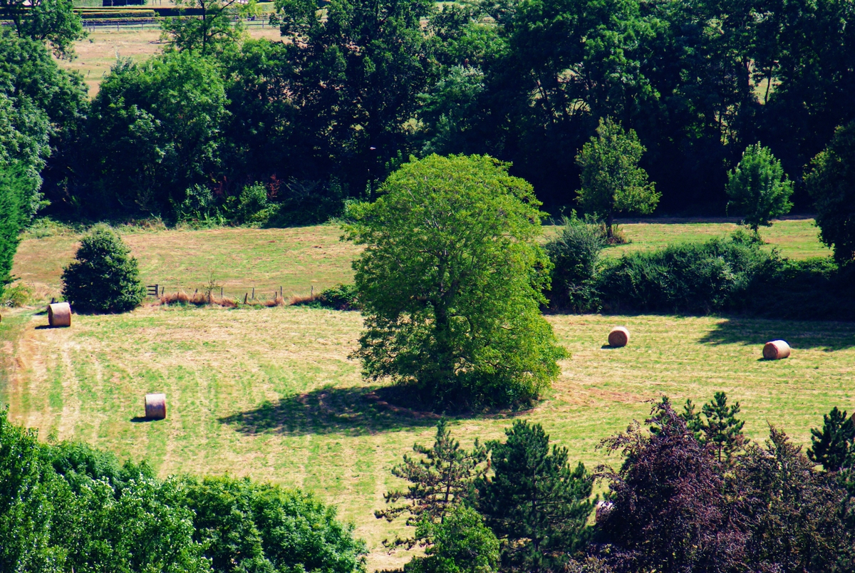 The countryside of Montfort L'Amaury © French Moments