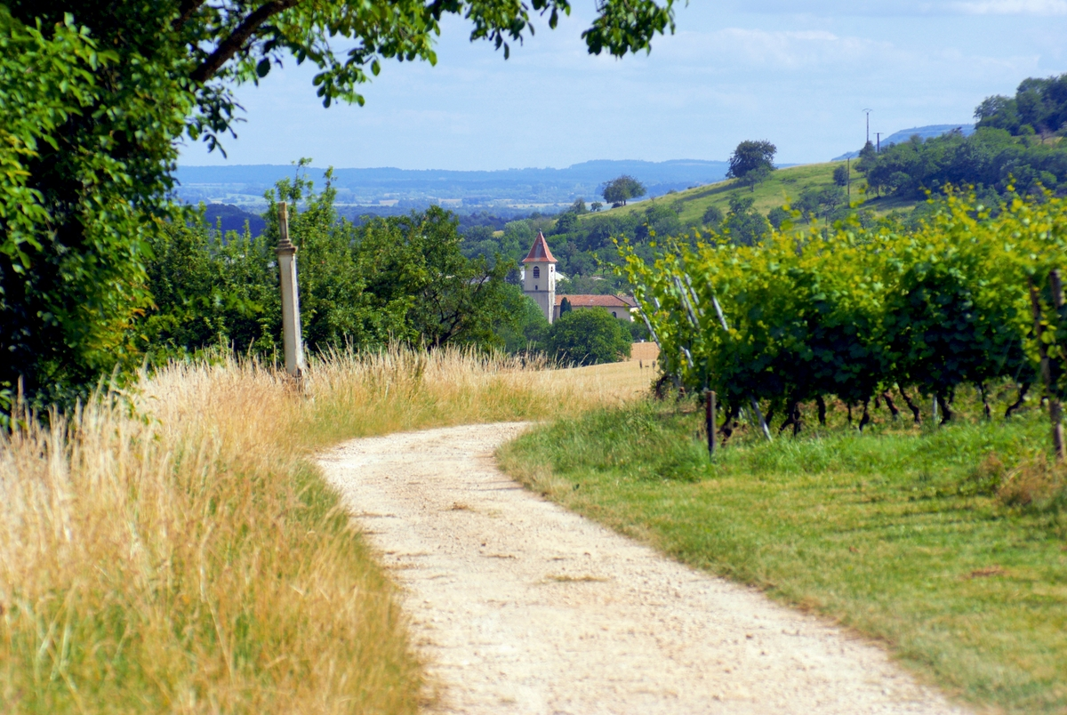Near Toul, Lorraine © French Moments