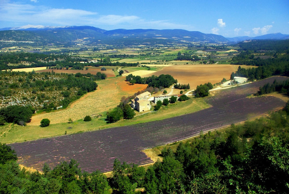 Photos of Rural France: The Pays de Sault, Provence © French Moments