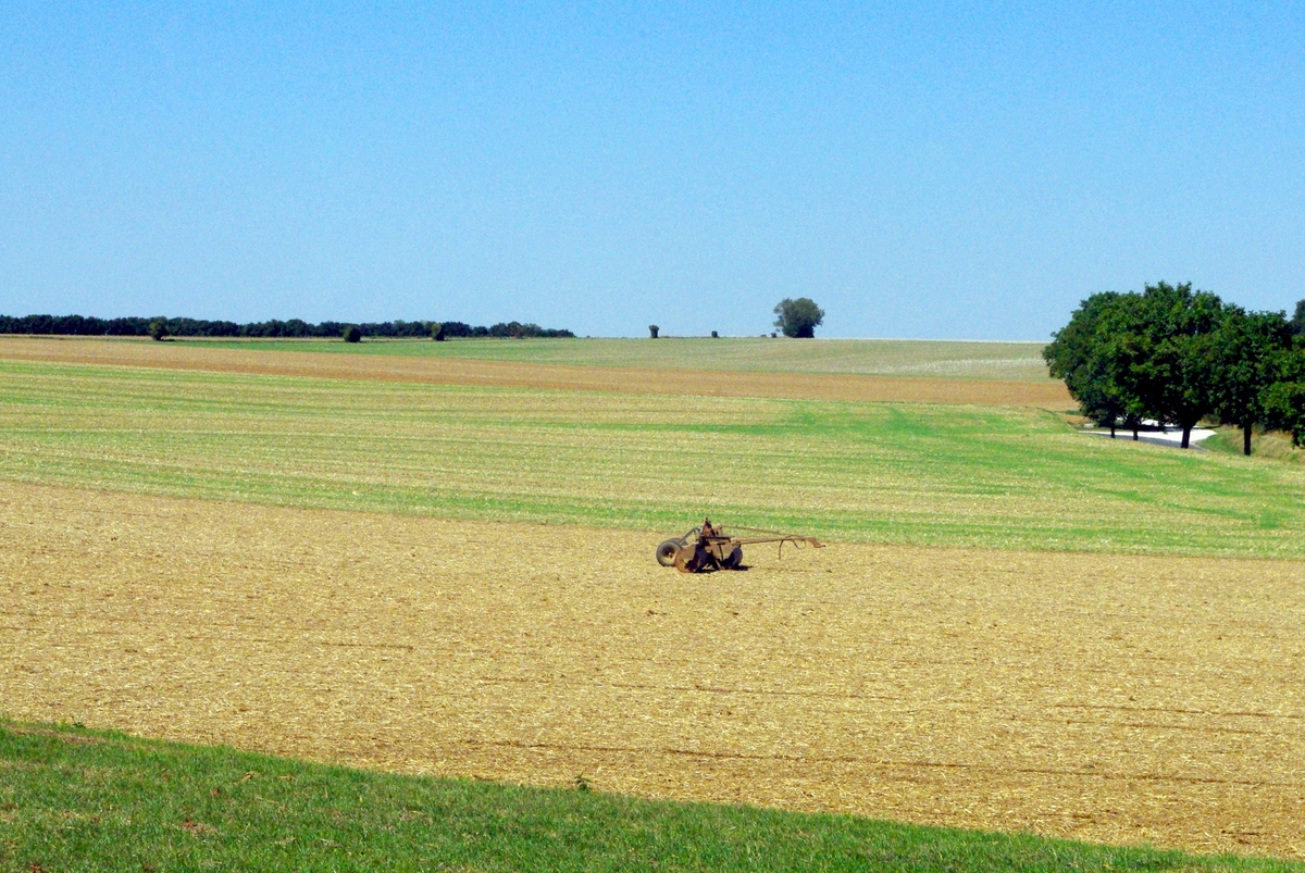 Photos of rural France: Landscape of the Brie region © French Moments