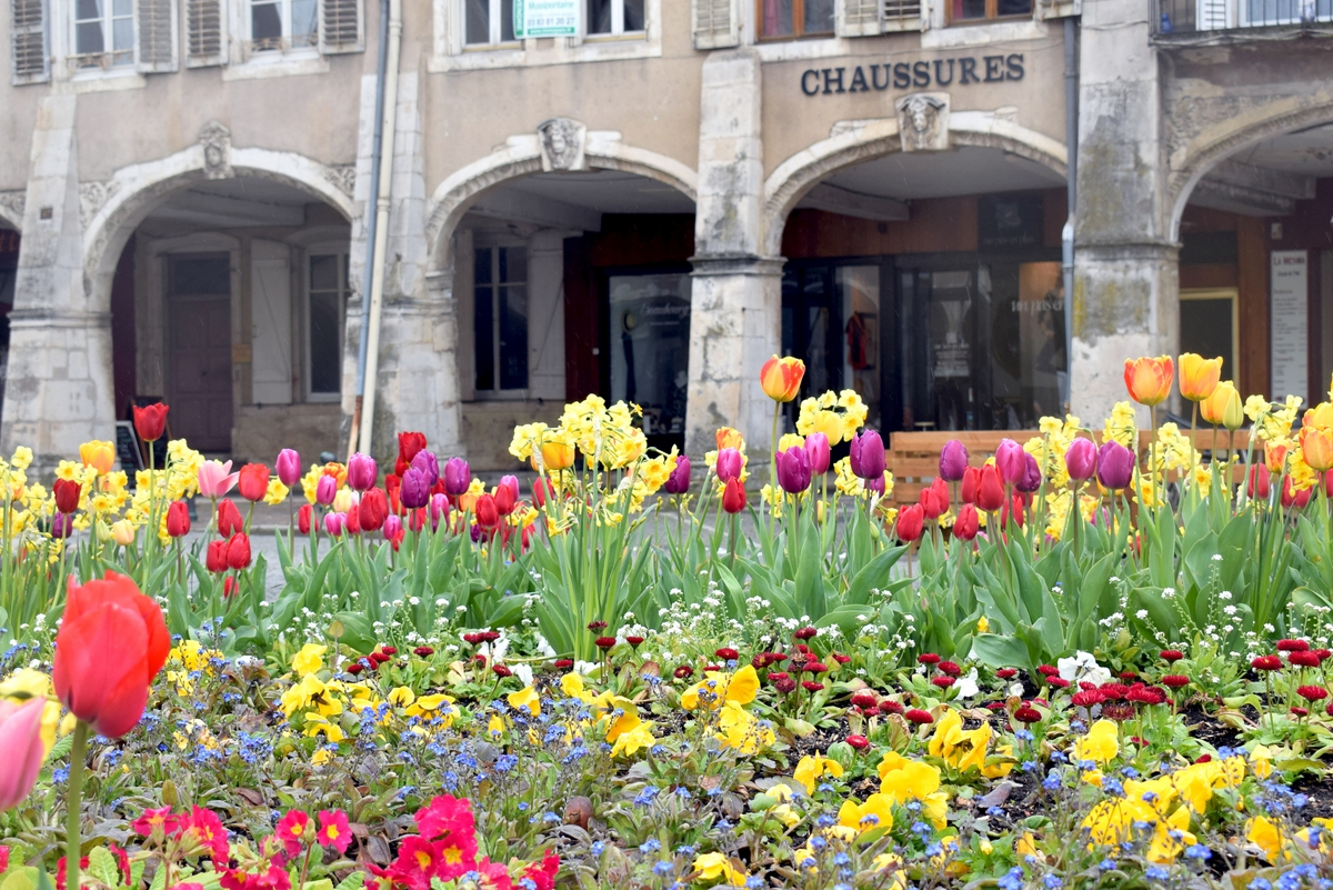 Moselle Valley - Photos of Spring in Lorraine - Pont-à-Mousson © French Moments