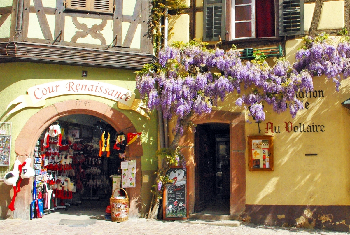 Photos of Spring in Alsace - Riquewihr © French Moments