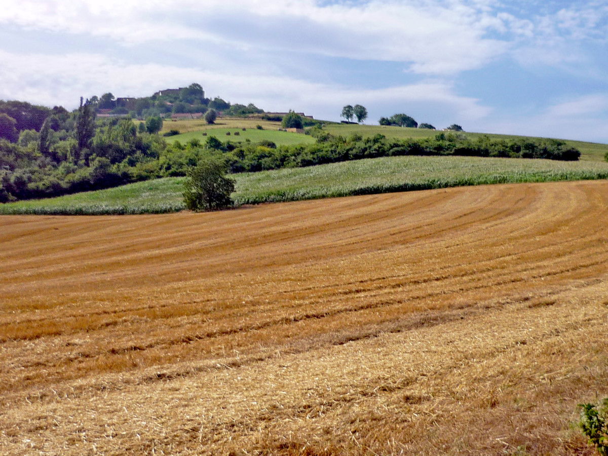 Moselle Valley - Butte de Mousson © French Moments