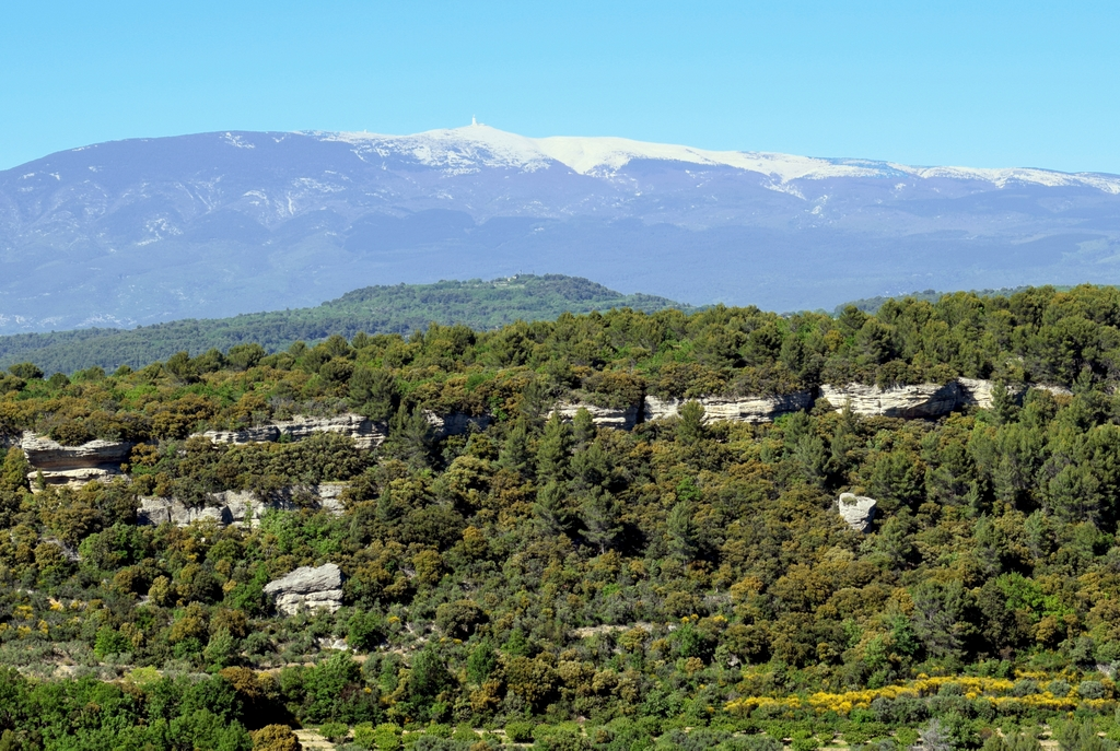 Mont Ventoux from Vénasque © French Moments